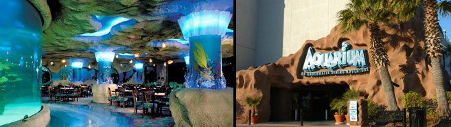 Aquarium Kemah