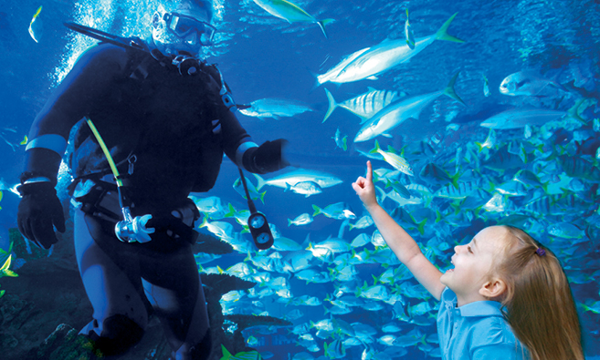 Scuba diver inside the aquarium