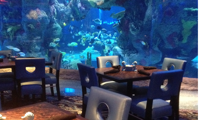 Dining Room Surrounded By Aquarium