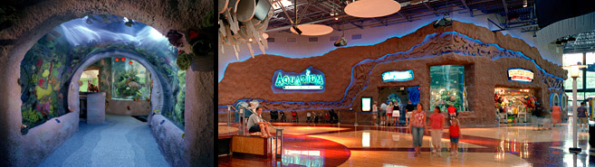 Nashville Aquarium Restaurant Interior And Dining Room