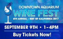 Wine Fest October 1st