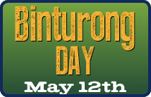 Binturong Day, May 14th