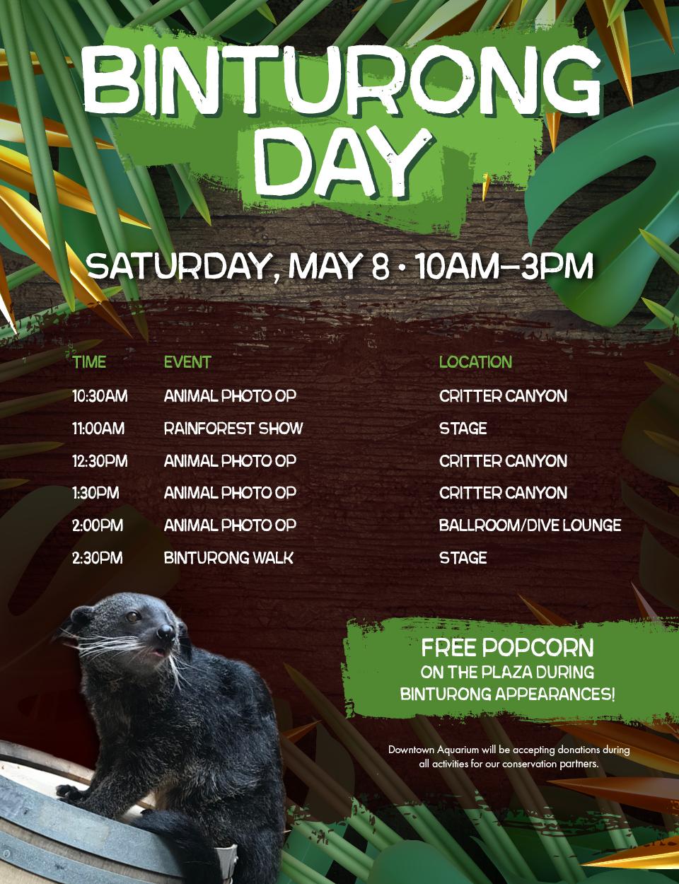 Binturong Day - Bear-Cat Sat, May 4th 10:00am - 3:00pm.