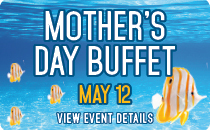 Mother's Day Buffet on May 12th
