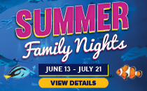 Join the Denver Downtown Aquarium for Summer Family Nights. Click to discover more details.