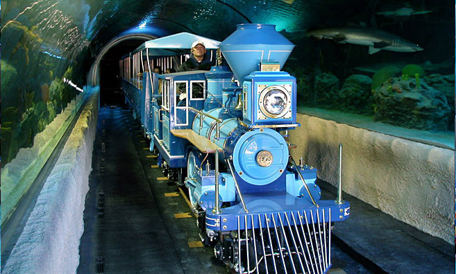 Train in aquarium tunnel