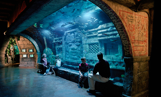 Ancient sculptures inside aquarium tank