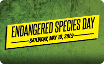 Endangered Species Day 2019