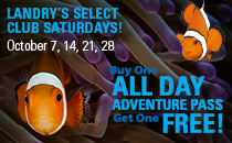 Landry's Select Club Saturday - All Day Adventure Pass.
