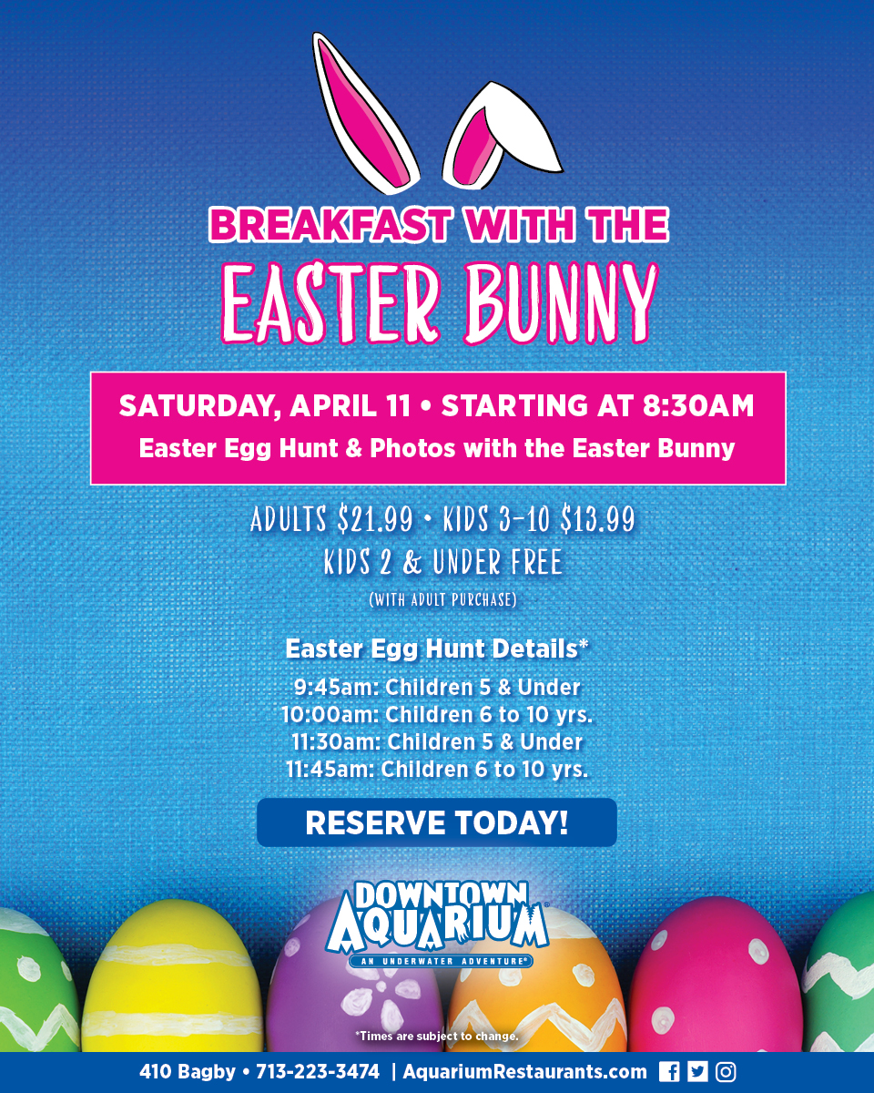 Image result for easter at the aquarium houston