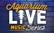 Downtown Aquarium - Live Music Series