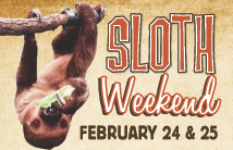 Sloth weekend February 24th and 25th 10am - 2pm.