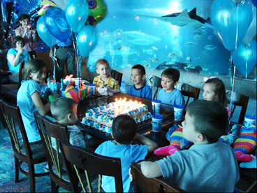 Birthday Party At The Aquarium Photo 1