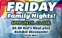 Friday Family Nights Details