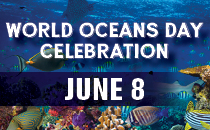 World Ocean Day Events