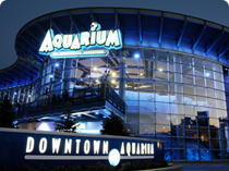 Image Gallery Aquarium Restaurant