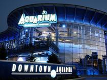 Aquarium Restaurants