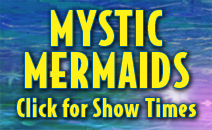 Get more information on the Mystic Mermaids.